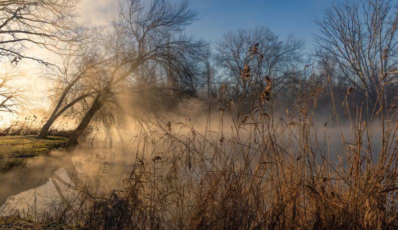 утро, и, туман, над, водой Зимнее утроphoto preview