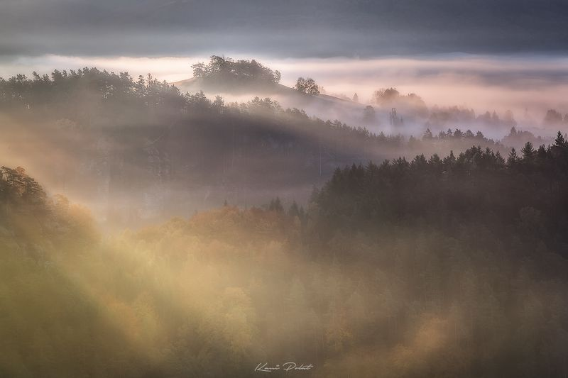 Misty morning фото превью