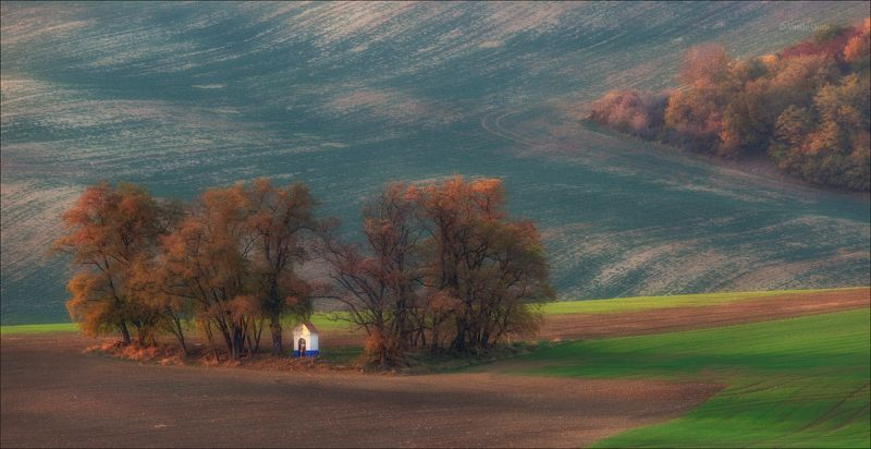 южная моравия,пейзаж,hils,часовенка, св.варварa,линии,chapel,south moravian,lines,свет,czech,осень,чехия,landscapes. The chapel фото превью