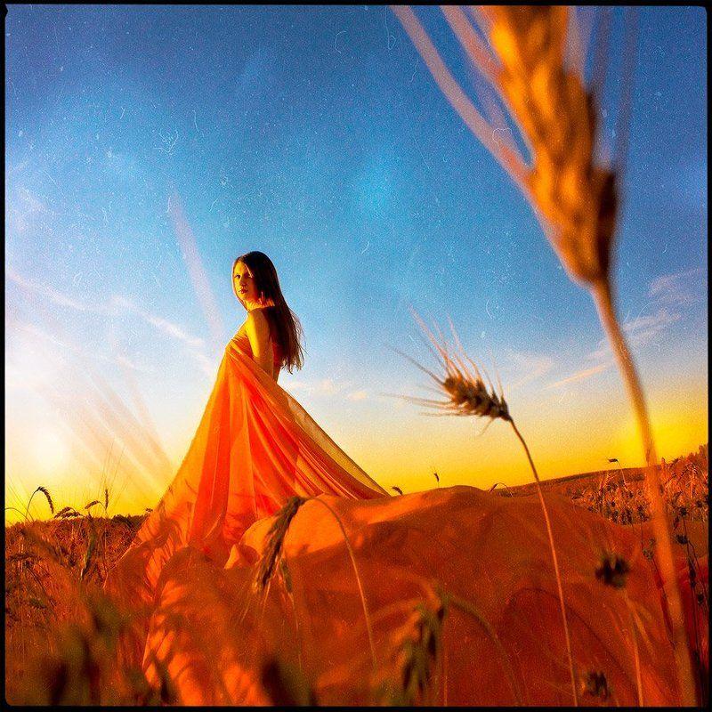 девушка, поле, рассвет, пшеница, поле ***photo preview