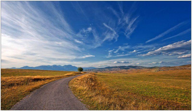дерево,горы,долина,облака,осень,одиночество возвращение...photo preview