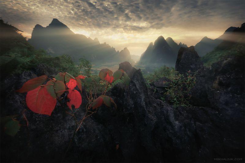 Вьетнамphoto preview