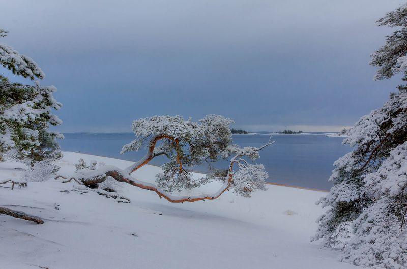 ладога, зима, шхеры, рассвет ,карелия Соснаphoto preview
