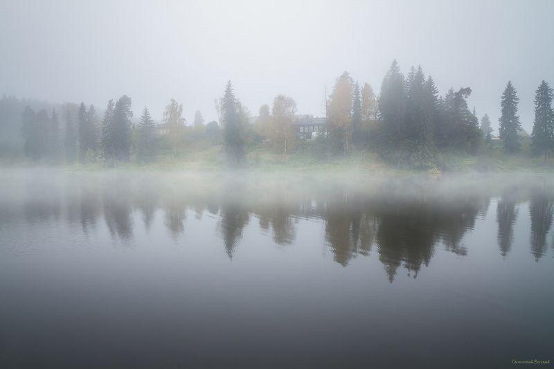 туман, утро, пруд, озеро, осень, пасмурно Пробуждениеphoto preview