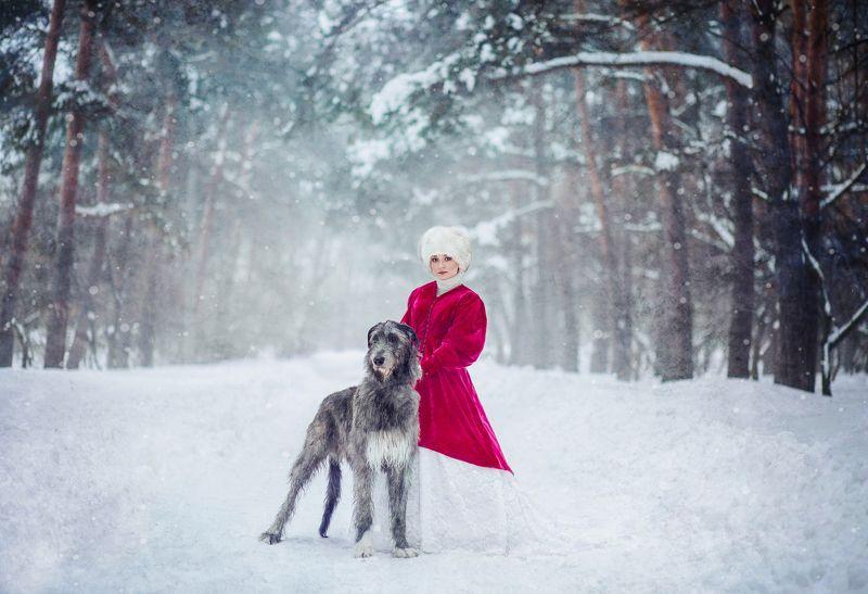 зима, самовар, рыженькая, лошадь, снег, мороз, сказка, собака, собаки, ирландец, ирландскийволкодав ***photo preview