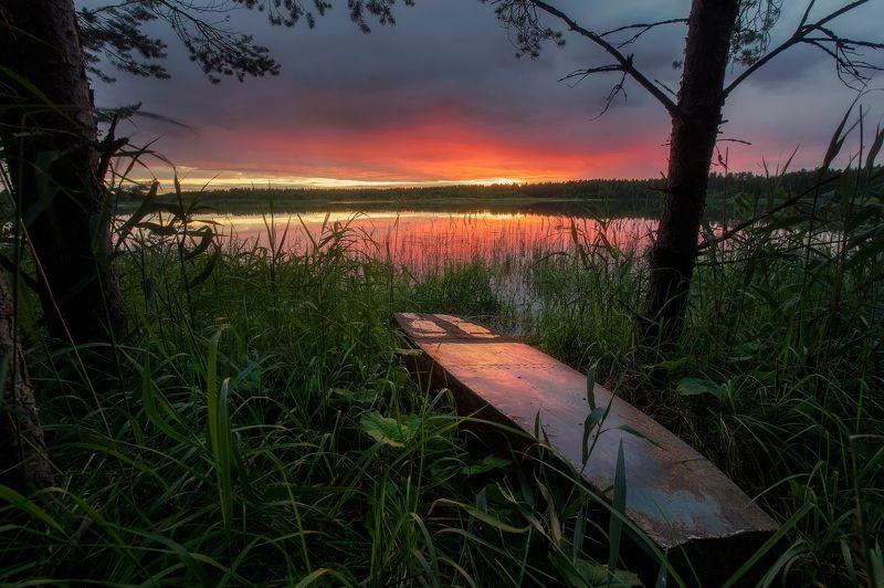 пейзаж, закат, лодка В густой травеphoto preview