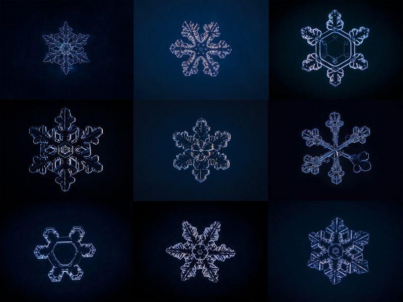 Цвет настроения  - зимний!photo preview