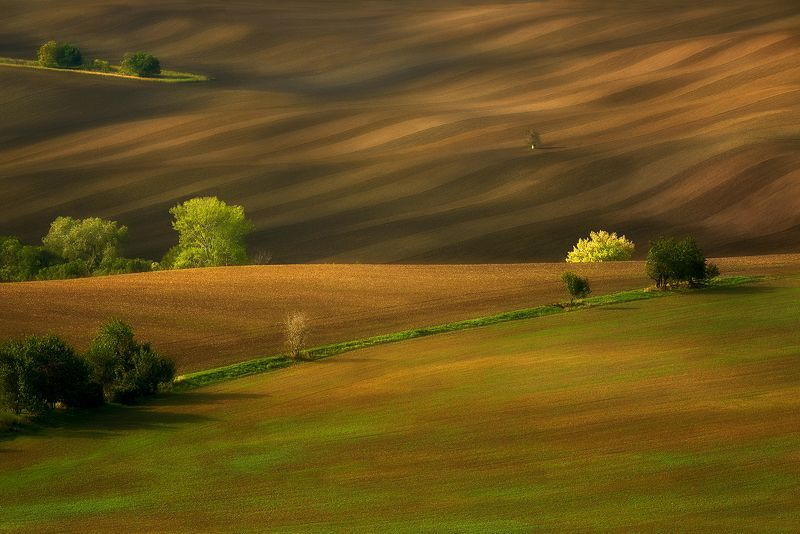 agriculture,background,beautiful,countryside,czech republic,environment,farm,field,grass,green,hill,hills,house,land,landscape,meadow,moravia,nature,outdoor,plant,rolling,rural,scenery,summer,travel,view Moravian fieldsphoto preview