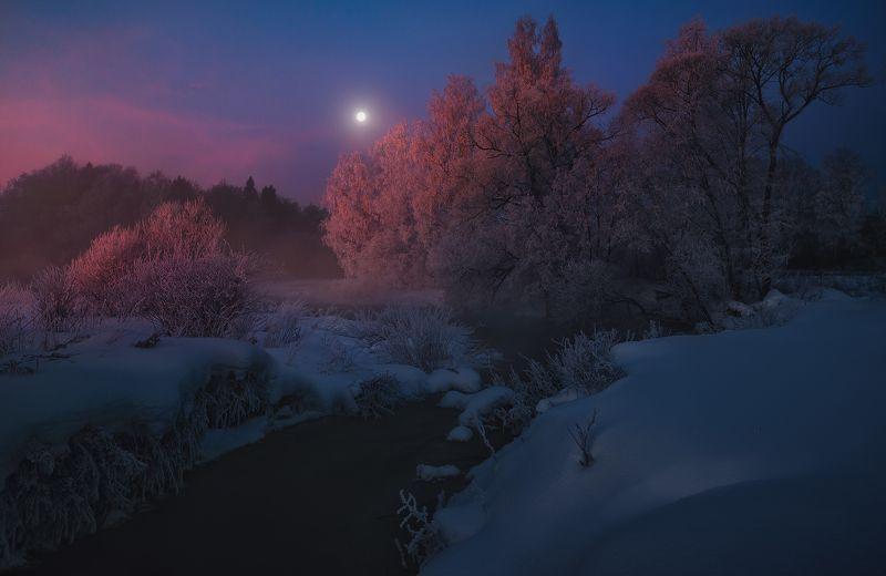 Зимнее утро photo preview