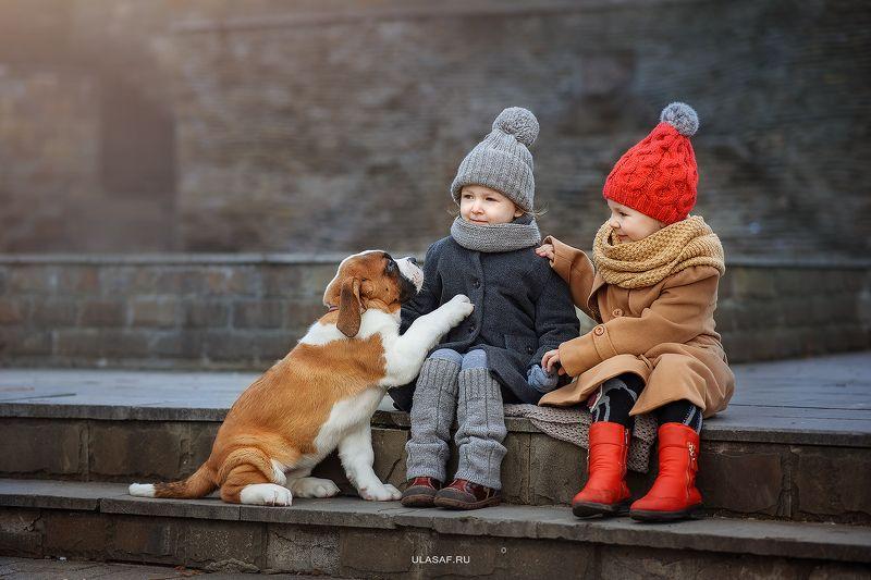 портрет, зима, winter, девочки, girls, животные, собака, сенбернар, щенок, dog, друзья, солнышко, лучи, happy, happiness, сказка, волшебство Три подружкиphoto preview