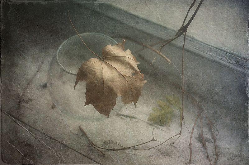 Всё в мире мимолетно и призрачно..photo preview