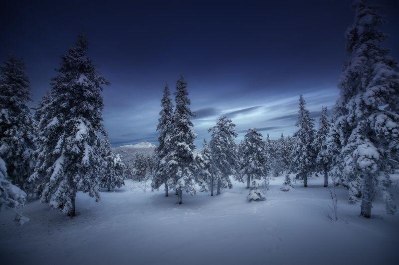 урал, таганай, зима Заметенныеphoto preview