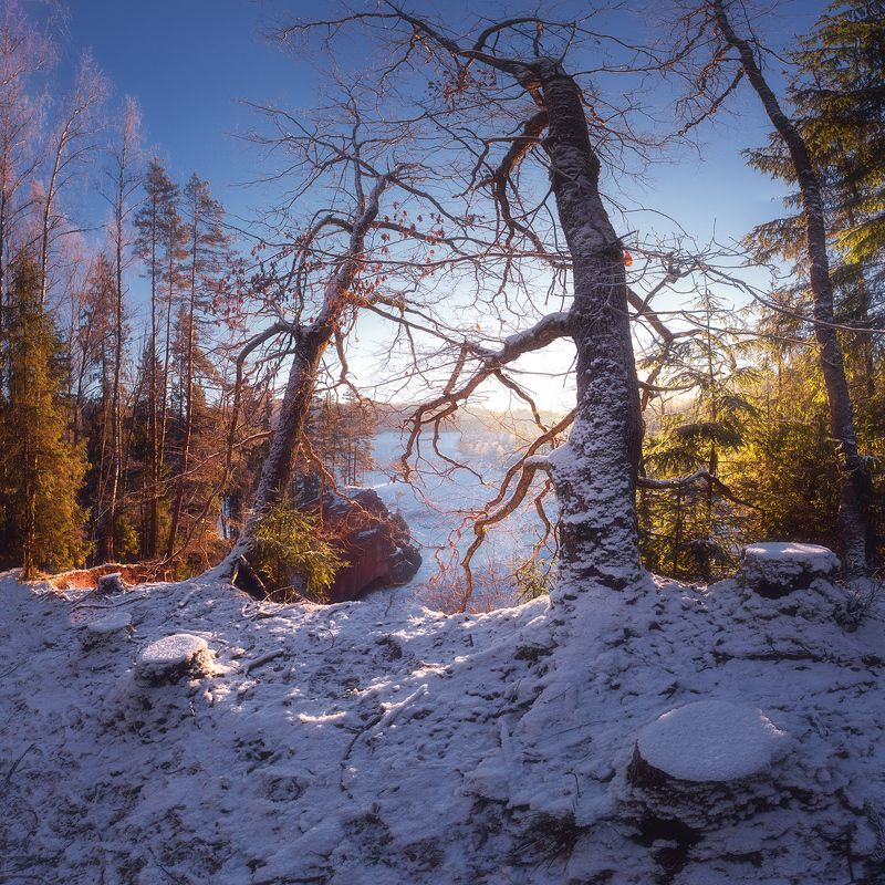 зима, латвия, амата Смотрящиеphoto preview