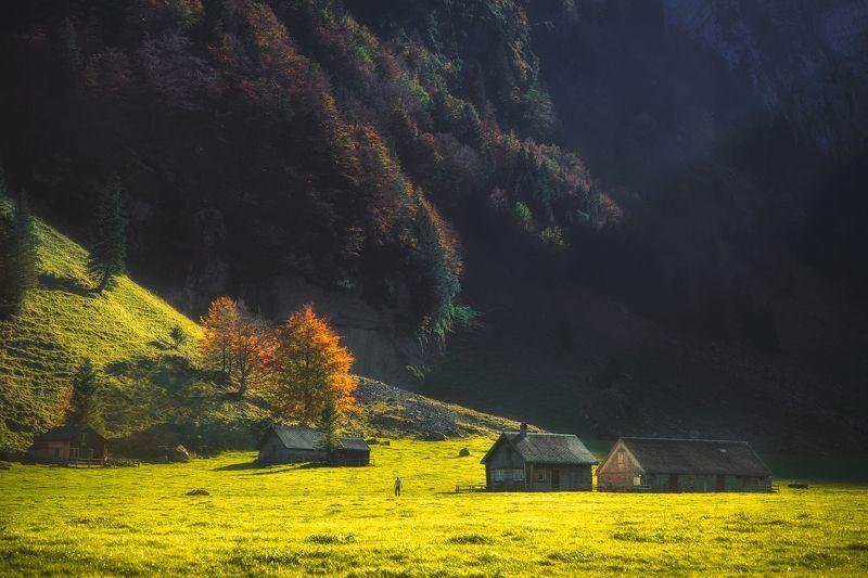 landscape,swiss,appenzell,light,autumn Seealpseephoto preview
