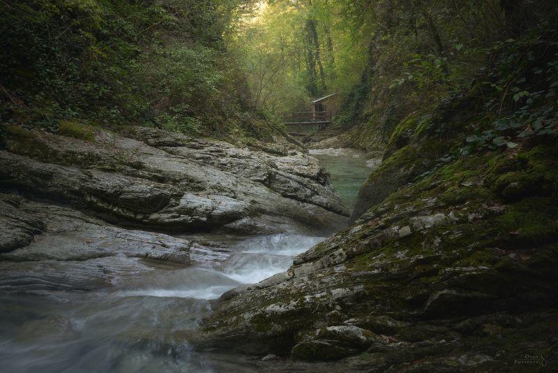 краснодарский край, индюк, бешенка, букепка, таштай, каньон, река, южный лес, лес В лесах Краснодарского краяphoto preview