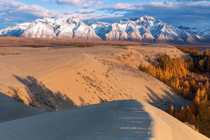 забайкалье, чарские, пески, кодарский, хребет, осень, горы, лиственница О ТАЙГЕ ГОРАХ И ПУСТЫНЕ.photo preview