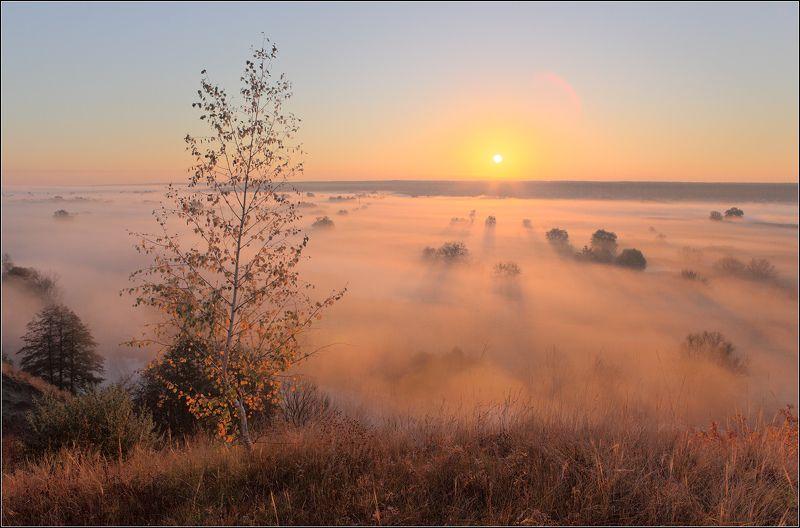 утро река туман Северский Донец на рассветеphoto preview