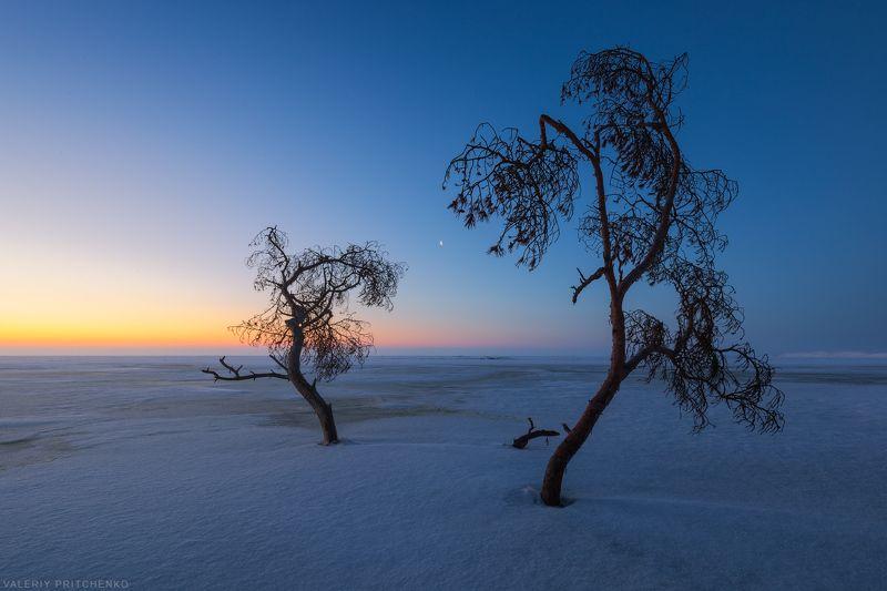 рассвет, пейзаж, утро, природа, sunrise, landscape, nature В рассветный час.photo preview
