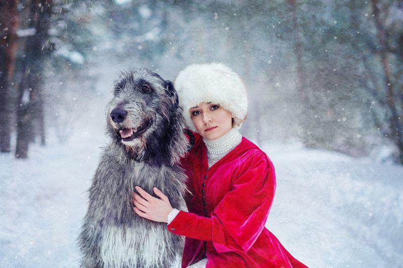 зима, самовар, рыженькая, лошадь, снег, мороз, сказка, собака, собаки, ирландец, ирландскийволкодав Зимние сказкиphoto preview