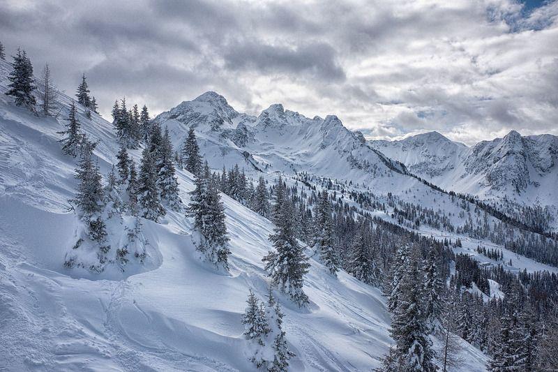 Зимние контрастыphoto preview
