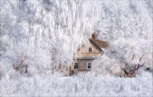 Зимняя сказка ..