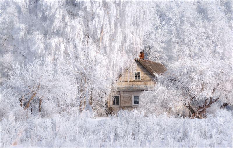 зима, изборск, январь, Зимняя сказка ..photo preview