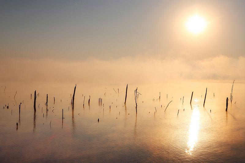 утро, туман, соленое, озеро, кавказ Утренний туман на озере Тамбуканphoto preview