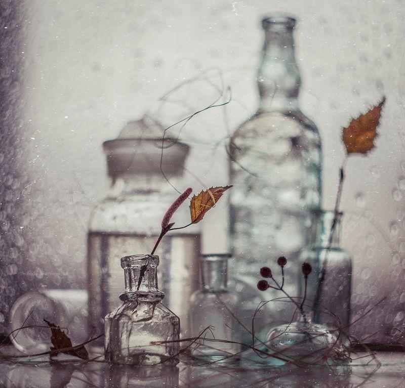 последний месяц зимы*photo preview