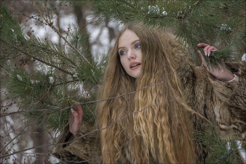 зима, лес, январь, девушка, модель photo preview