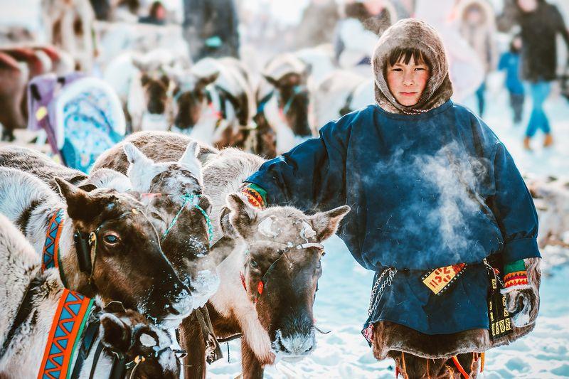 ямал ,салехард ,ненцы ,ямал, янао ,народы россии ,природа, полярный урал, народы севера « Вечный странник»photo preview