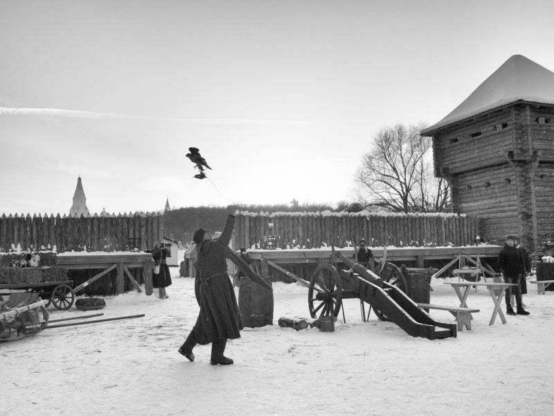 Falconry, Moscow, Russia, Black and white, Park, Winter A falconryphoto preview