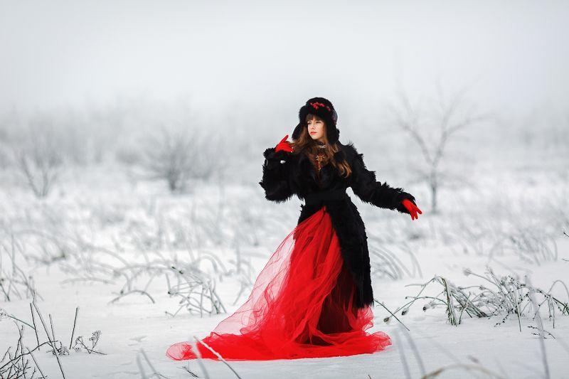 красное, черное, белое, арт, художественный, зимний, мода, цвет, Красное. Черное. Белое.photo preview