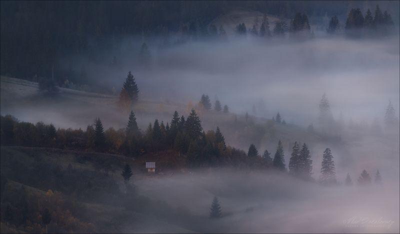 Карпаты, осень, туман, Синевир, Межгорье Там, где живут туманы...photo preview