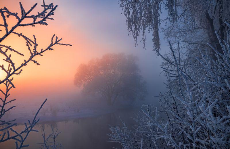 пейзаж, утро, истра, рассвет, мороз, зима, солнце, река Пробиваясь в туманеphoto preview