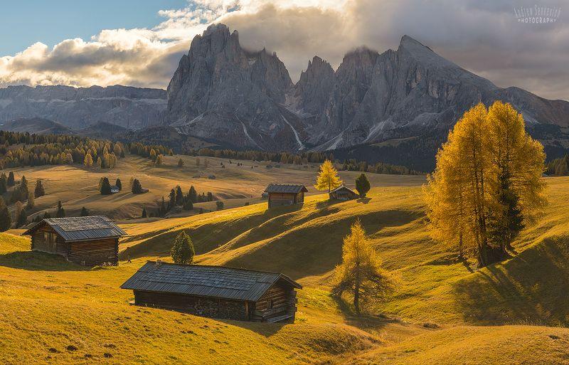 доломиты, dolomites, italy, alpe di siusi Теплая осень на плато Alpe di Siusiphoto preview
