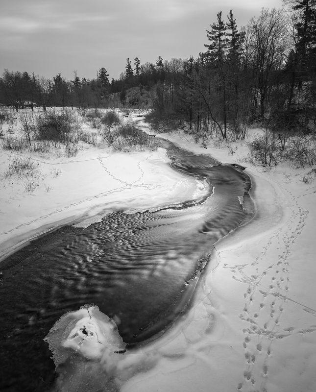 Silver creekphoto preview