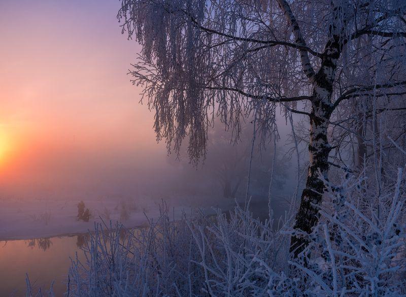 Рассвет, туман,  Истра, мороз, утро, зима  Охотники за светом photo preview