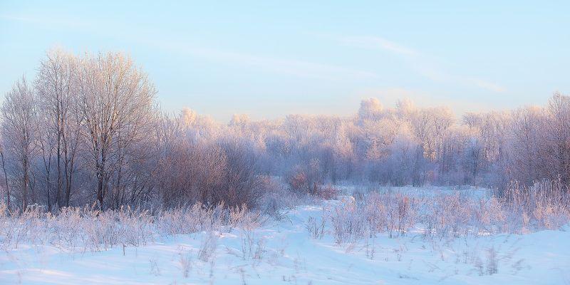 зима, снег, поле, день, мороз ***photo preview