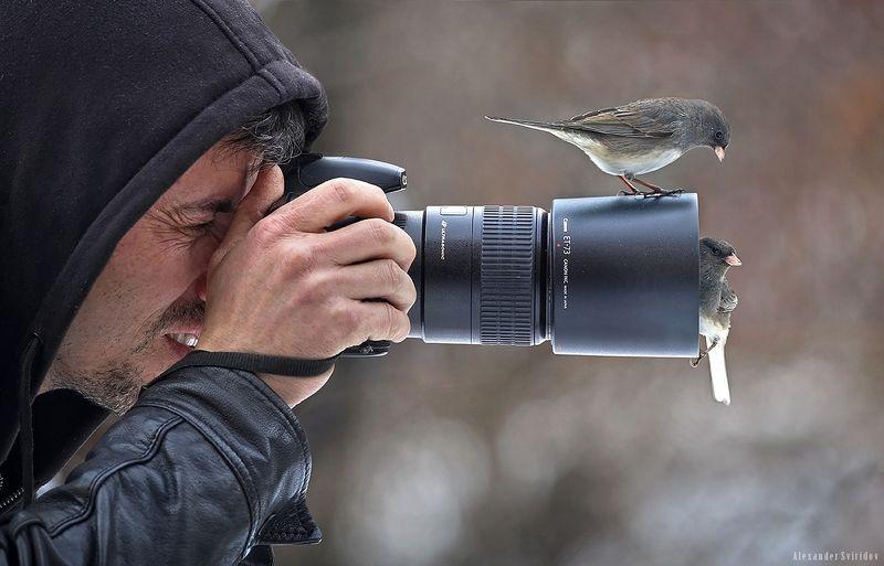 photographer birds Selfiephoto preview