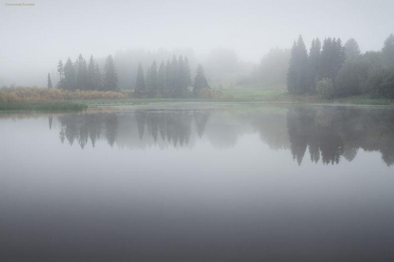 туман, утро, пруд, озеро, осень, пасмурно Мягкость осеннего утраphoto preview