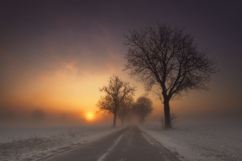 туманное утро,morning,landscape,fog,winter,snow,zanfoar,czech republic,bohemia,moravia,nikon d750 туманное утроphoto preview