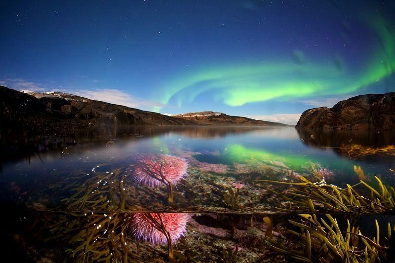 кольский полуостров, север, полярное сияние, сплит Магия полярной ночиphoto preview