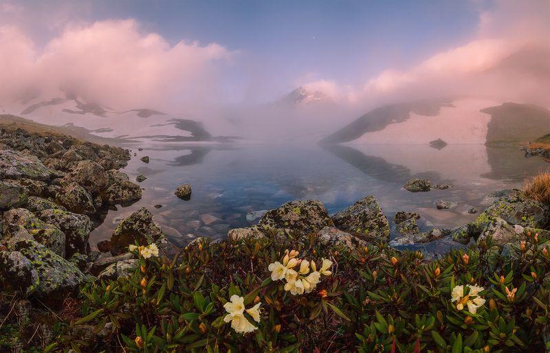 северный кавказ загедан уруп озера утро июнь Утро на горном озере. Истоки Урупа.photo preview