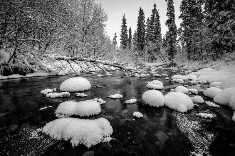умболка, север, кольский, январь, хибины, мороз, изморозь, Умболка.photo preview