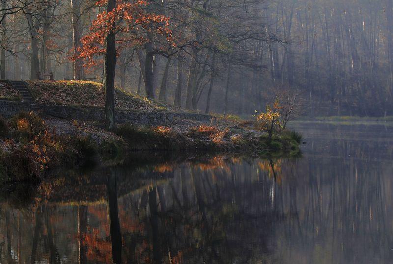 Осенняя гармонияphoto preview