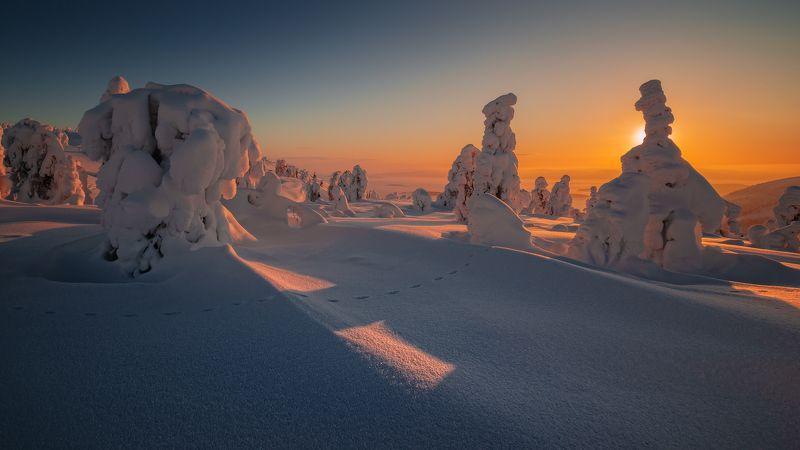 север, кольский, заполярье, кандалакша,гора волостная Ближе к вечеру.photo preview