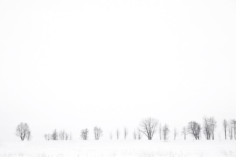 штрихкод, пейзаж, зима, чб Штрихкодphoto preview