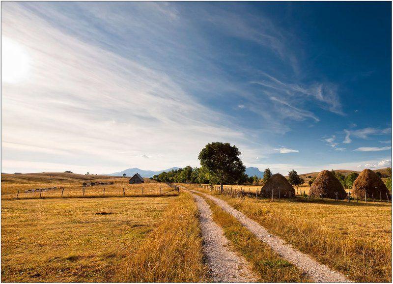 горы,горная деревня,дорога,дом дорога к дому...photo preview