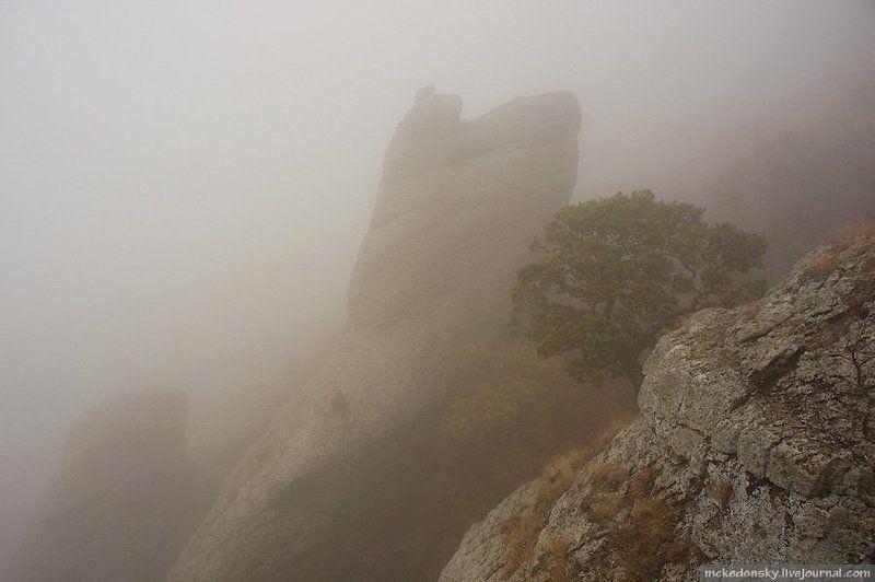 демерджи, крым, украина, туризм, скалы, туман, горы В тумане..photo preview