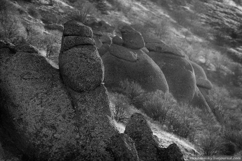 b&w, ч\\\\б, пейзаж, природа, камни, демерджи, украина, крым Сфинксы Демерджиphoto preview